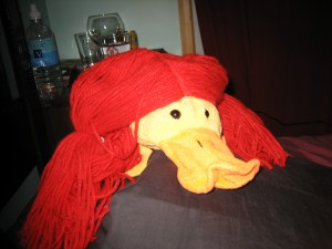 Phillip K. Duck masquerading as a red-head.